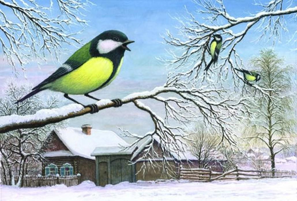 Зимующие птицы анимационные картинки